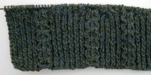 Irish_moss_ribbing